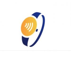 Visa logo wearable